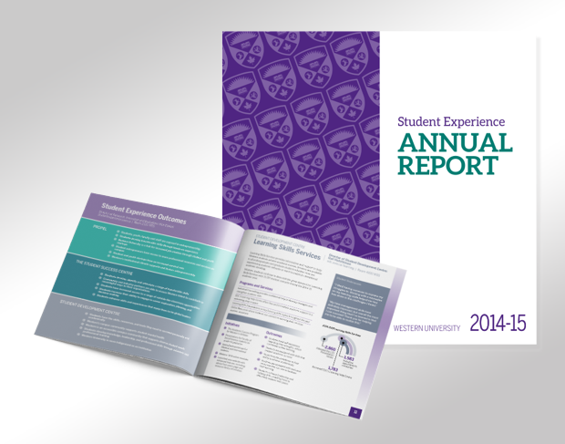 Student Experience Annual Report
